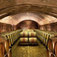PROPOSTA VIAGGIO — Langhe, terra di vini, tartufi e scrittori  (ottobre 2022)