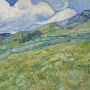"""PADOVA – Van Gogh :               """" I colori della vita """"    Giovedi 12 novembre 2020"""