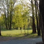le Passeggiate di primavera Camminare e…. ma quanto è importante camminare !!!!